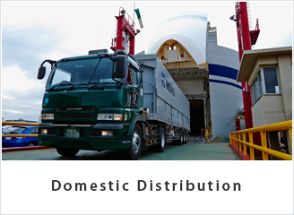 Domestic Distribution