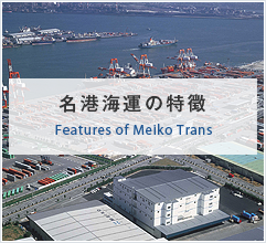 Features of Meiko Trans